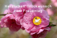 Internationaler_frauentag_gruss_kfv_2016